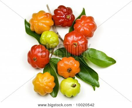 Tropical fruit also called Surinam Cherry, Cayenne Cherry and Pitanga stock photo