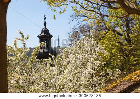 Beautiful panoramic view of city streets of Prague, on church, Petrin Tower, green and blooming trees, blue sky from Prague Castle in spring time. City skyline from aerial view, Czech Republic, free space for text stock photo