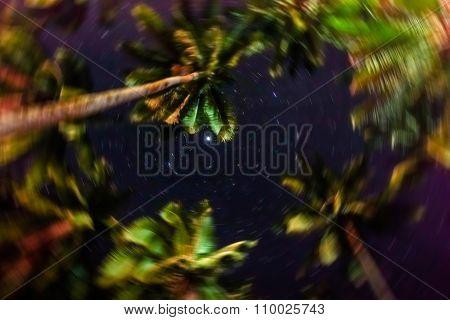 Blurred defocused sky full of stars in the jungle of El Nido - Island of Palawan in Philippines - Concept of night wonders and emotional feelings stock photo