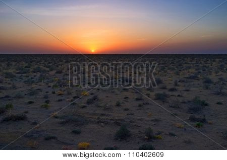 The red sunset over the Kyzyl Kum desert covered with saxaul plants Uzbekistan. stock photo