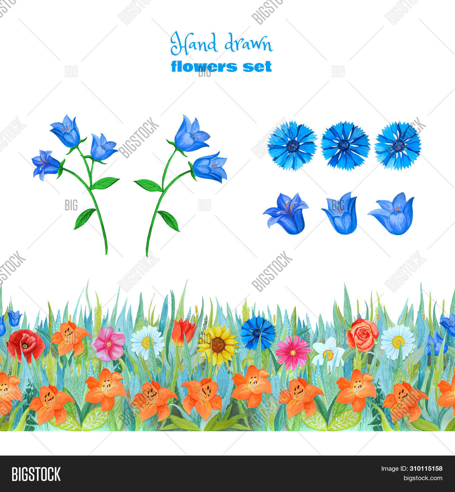 abstract,background,bell,blue,border,bright,color,cornflowers,cute,fabric,flower,graphic,hand,isolated,lilies,meadow,modern,ornament,paint,paper,pattern,plant,poppie,red,repeat,retro,seamless,set,shape,simple,stripe,surface,template,textile,texture,tile,trendy,tulips,wallpaper,watercolor,white,wildflowers