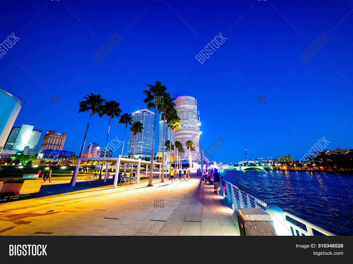 america,architecture,background,bay,beautiful,buildings,built,city,cityscape,cloudy,colorful,colors,commercial,dock,downtown,dusk,evening,florida,green,lights,modern,nature,nautical,night,ocean,outdoor,reflection,riverwalk,romantic,scene,sea,shelter,skyline,skyscraper,street,structure,sunset,tampa,tourism,tourist,tropical,tropics,turquoise,twilight,urban,usa,water,waterfront