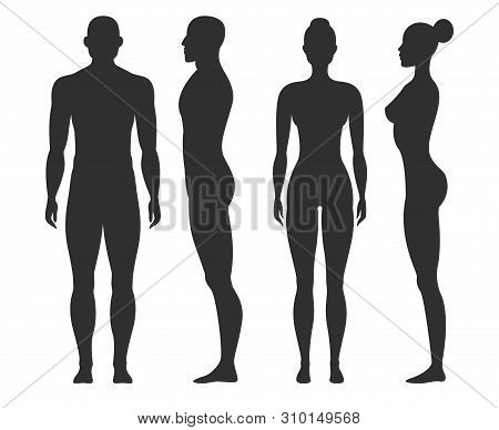 Man and woman silhouettes. Human body outline shapes in side and front view. Standing male and female figures vector isolated stand guy naked fitness collection stock photo
