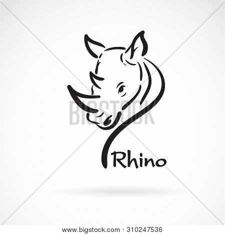Vector of freehand rhino head painting on white background. Wild Animals. Easy editable layered vector illustration. stock photo