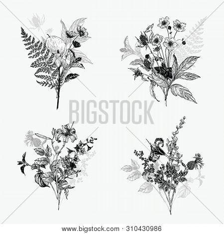 Vintage wild flower bouquet illustration set. Isolated black and white botanical herbs and flowers hand drawn graphic. Collection of botanical arrangement stock photo