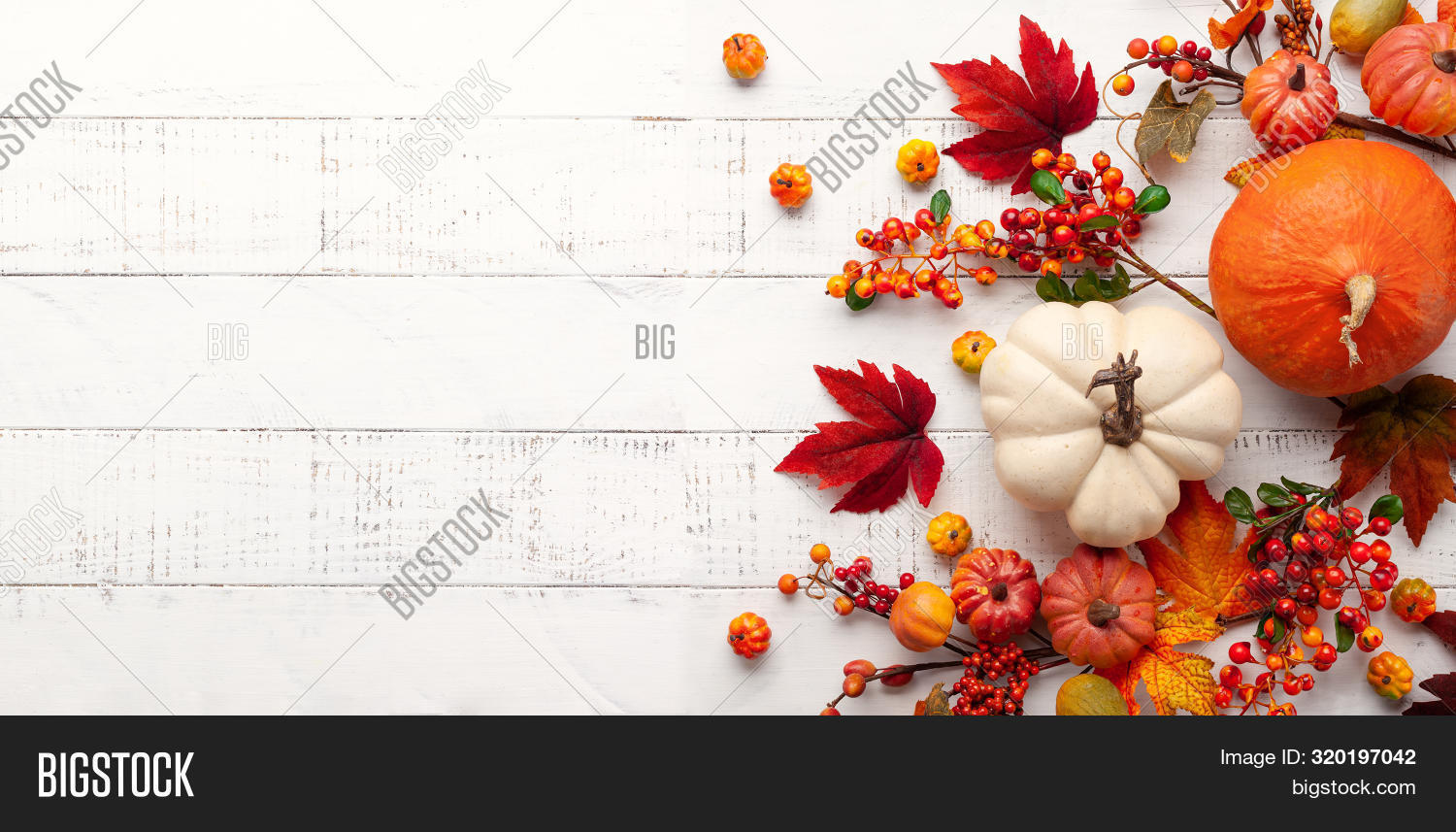 acorn,autumn,autumn leaves,background,beautiful,berry,celebration,composition,concept,day,decor,decoration,design,fall,festive,flat lay,foliage,food,forest,garden,halloween,harvest,holiday,leaf,maple,nature,november,october,orange,plant,pumpkin,red,rustic,scene,season,sun,table,thanksgiving,top view,traditional,vegetable,white,wood,yellow