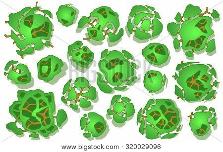 Set of trees in top view. Different icon of plants and trees for architectural or landscape plan. View from above. Nature gret en spaces. Vector stock photo