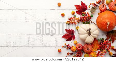 Festive autumn decor from pumpkins, berries and leaves on a white  wooden background. Concept of Tha