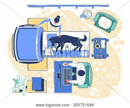 Veterinary Clinic Examination Room Interior With Different Equipment For Health Care And Animal Trea
