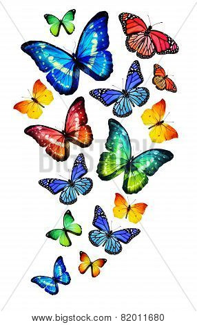 Many Different Butterflies, Isolated On White Background-Dishwasher Magnet Skin (size 24x24)