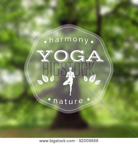 Name of yoga studio on a tree background. Yoga class motto.