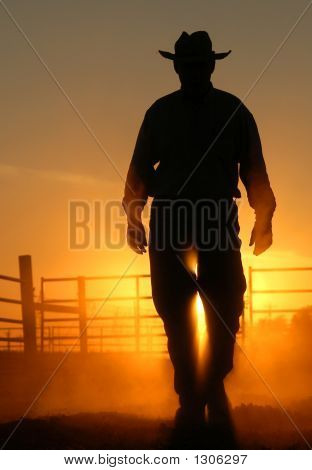 silhouette shot on a farm with a lot of dust. has a powerful secure mood. stock photo