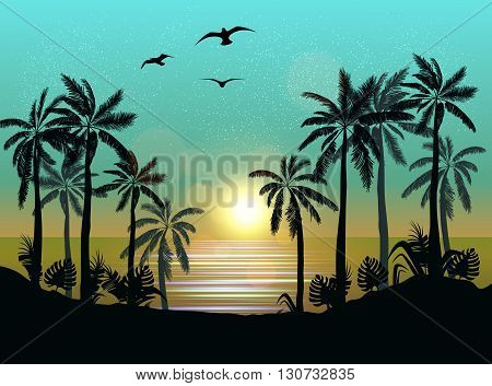 Summer Beach Night Palm Silhouettes On Sunset With Beautiful Sky Background Tropical S