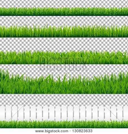 Realistic Green Grass Borders, Isolated on Transparent Background, Vector Illustration