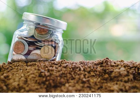 Coin in the glass jar growing from soil against blurred natural green background and copy space for investment, business, finance and money growth concept stock photo