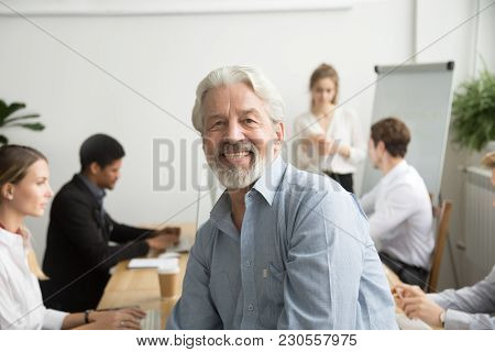 Smiling male senior team leader, aged teacher looking at camera with office people at background, happy old gray-haired company boss, experienced mentor or executive professional head shot portrait stock photo