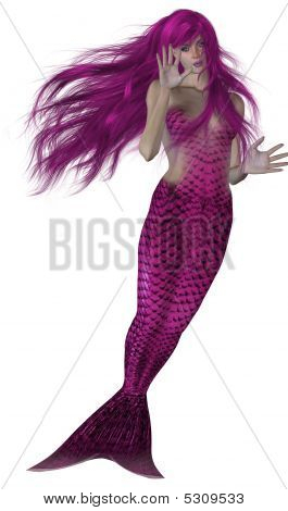 Pink haired and tailed mermaid swimming on a white background stock photo
