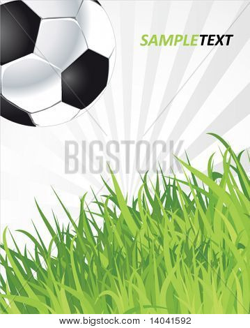 football soccer ball futbol grass- vector collection stock photo