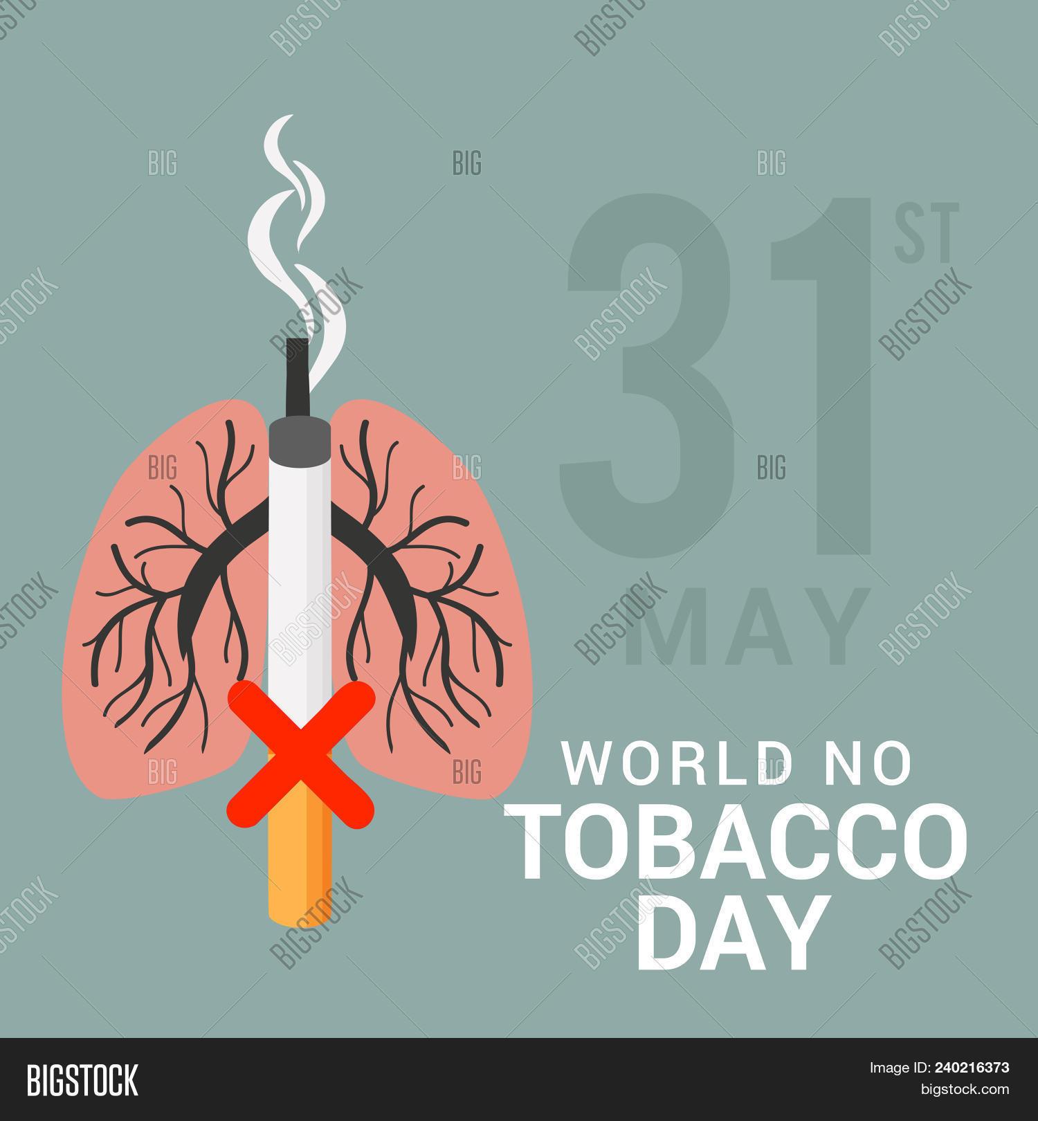 No Smoking Day 02 April 05 240216373 Image Stock Photo