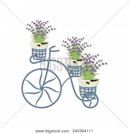 Vintage bycicle with lavender on the white background. Vector illustration stock photo