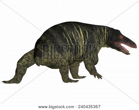 Jonkeria Dinosaur Tail 3D illustration - Jonkeria truculenta was an omnivorous therapsid dinosaur that lived in South Africa during the Permian Period. stock photo