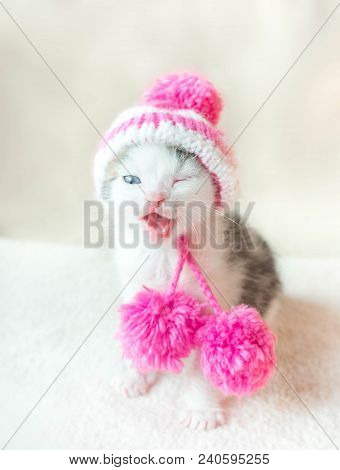 A cute little kitten in a pink knitted hat with pompoms is sitting on a white carpet. Cute sleeping kitty in hat. stock photo
