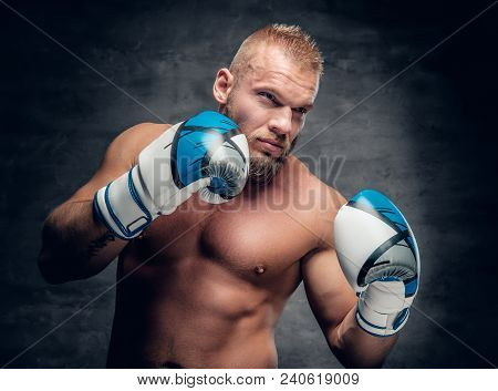 Studio portrait of bearded aggressive boxer in action over grey background. stock photo