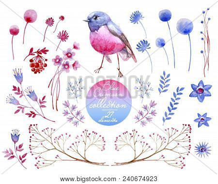 Watercolor collection of crimson and blue nature elements. Clipart consist of berries, flowers, leaves, bird and branches. stock photo