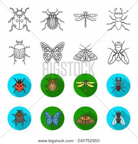 Wrecker, parasite, nature, butterfly .Insects set collection icons in outline, flat style vector symbol stock illustration . stock photo