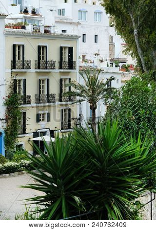 Old town of Ibiza (Eivissa). Whitewashed houses and lush palm trees. Balearic Islands. Spain stock photo