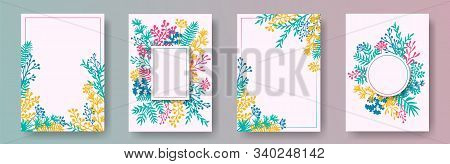 Tropical herb twigs, tree branches, flowers floral invitation cards set. Bouquet wreath retro cards design with dandelion flowers, fern, mistletoe, olive tree leaves, savory twigs. stock photo