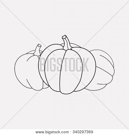 Gourd icon line element. Vector illustration of gourd icon line isolated on clean background for your web mobile app logo design. stock photo