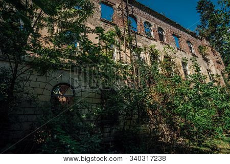 Ruined overgrown hospital in ghost mining town Akarmara, consequences of war in Abkhazia, green post-apocalyptic concept stock photo