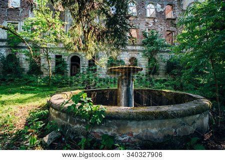 Old overgrown round broken fountain near ruins of abandoned mansion stock photo