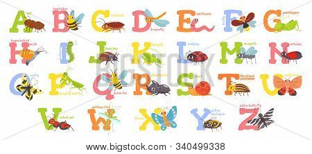 Cartoon insects alphabet. Funny bug letters, comic insect abc for kids and cute bugs vector illustration set. Educational english alphabet with colorful cartoon characters. Elementary school education stock photo