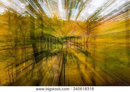Abstract photo, forest in autumn photographed with different effects of motion and zoom. Colorful textured background. long shutter speed. stock photo