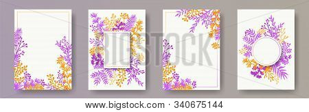 Tropical herb twigs, tree branches, flowers floral invitation cards set. Bouquet wreath creative invitation cards with dandelion flowers, fern, mistletoe, olive branches, savory twigs. stock photo