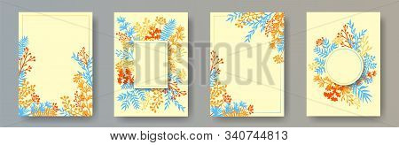 Wild herb twigs, tree branches, leaves floral invitation cards set. Herbal frames rustic invitation cards with dandelion flowers, fern, lichen, olive tree leaves, savory twigs. stock photo