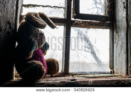 Old dirty stuffed toy rabbit on a windowsill in abandoned house stock photo