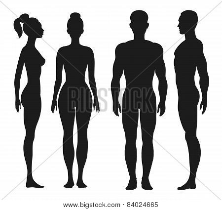 Stock Photo of Front and side perspective outlines of man ...