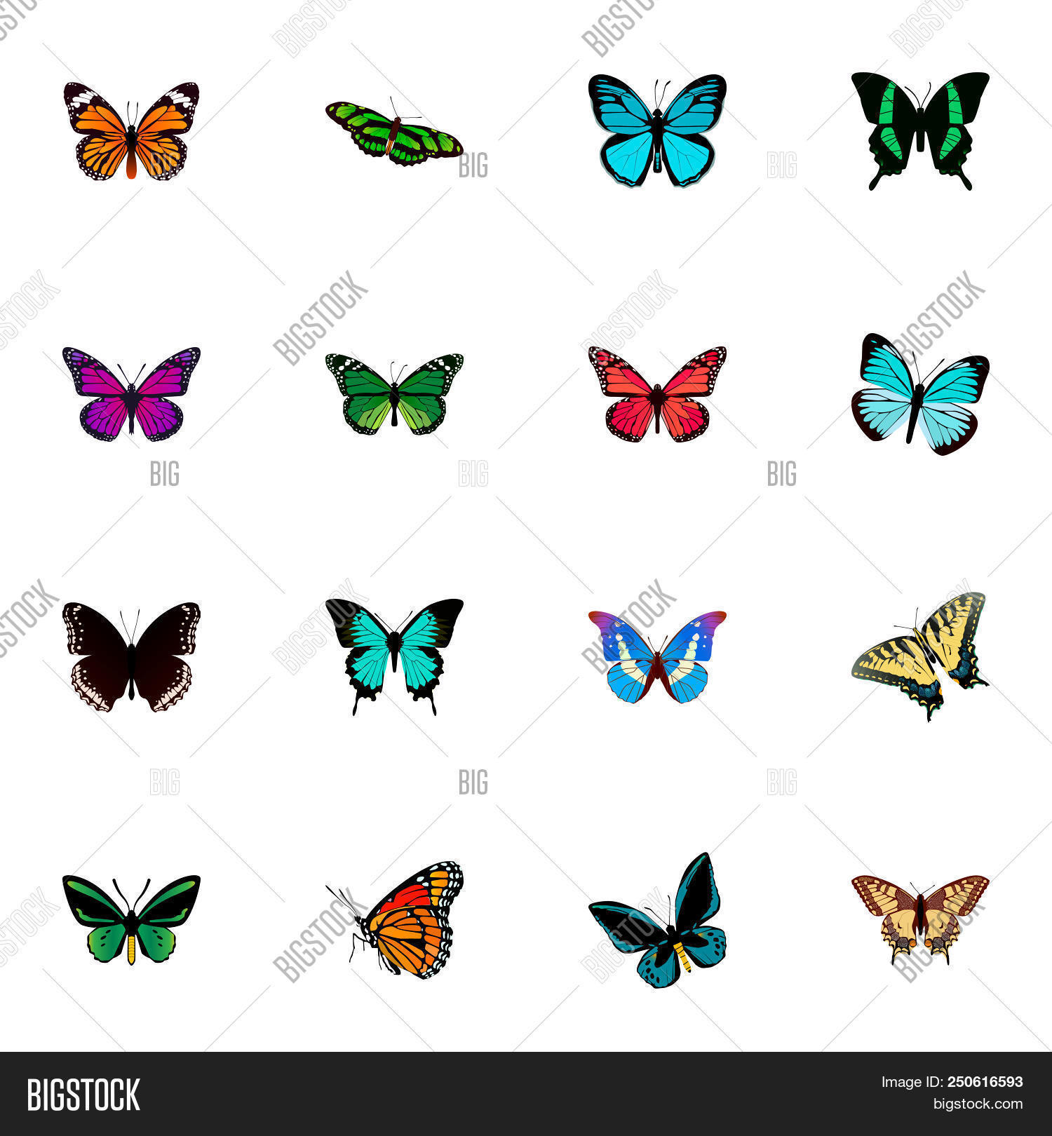3d,animal,beauty,blue,bright,butterfly,classical,collection,color,colorful,copper,decor,decoration,decorative,design,filigree,flight,fly,free,green,insect,lady,lexias,light,milkweed,monarch,moth,multicolored,natural,object,ornate,painted,papilio,plexippus,red,set,spring,style,summer,swallowtail,tiger,tropical,ulysses,web,white
