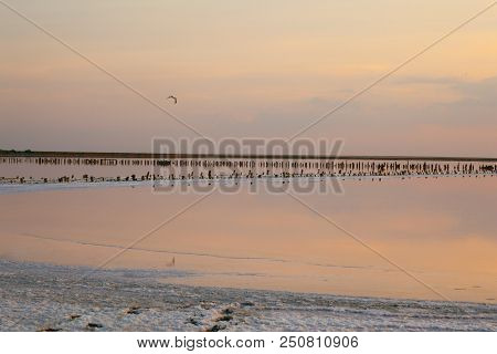 Pink salty Siwash Lake  at sunset, colored by microalgae, famous for antioxidant properties. stock photo