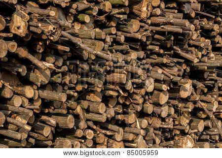 wooden logs stacked waiting to be used in the timber industry stock photo