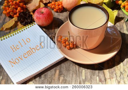 Tag with words hello november on the notebook cup of coffee lying on the books with dry yellow maple leaves and everlasting flowers on background stock photo