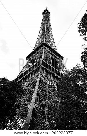 bottom view of high Eiffel tower in Paris France in Black and White with trees stock photo