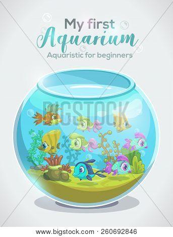 My first aquarium, aquaristic for beginners, childish book cover design. stock photo