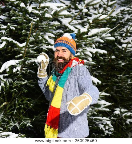 Macho with beard and mustache throws snowball. stock photo