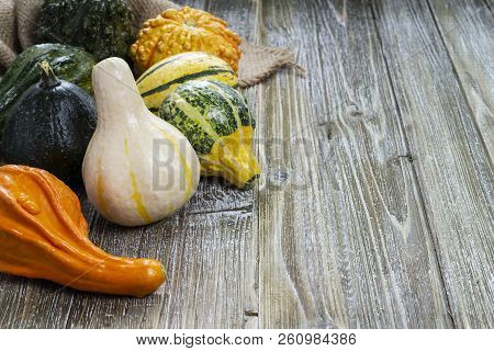 Various shaped and colored gourds on a wooden, white washed background. stock photo