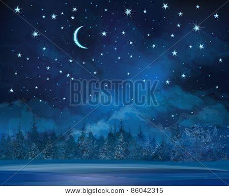Vector night winter background.