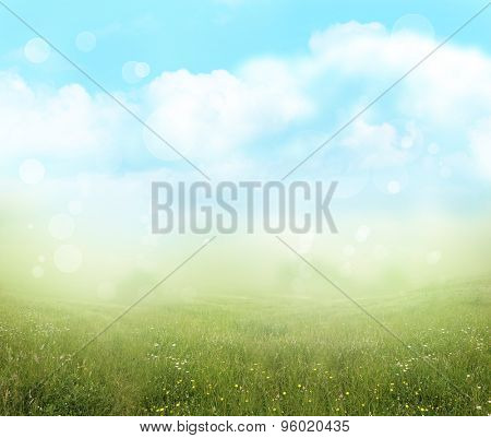 Green meadow and blue sky spring background